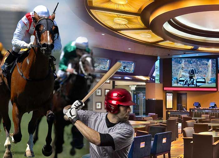 Sportsbook lounge showing sports being played